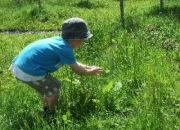 Nature Trails at Pink Apple Orchard - Butterfly catching!