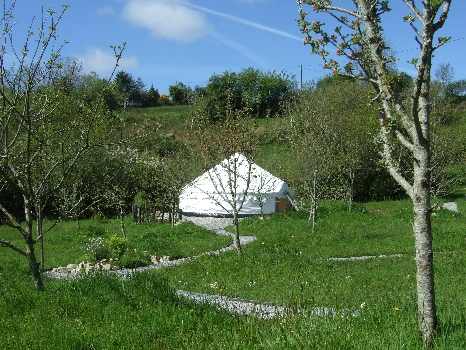 Glamping In Ireland. Cider Apples begin to Blossom
