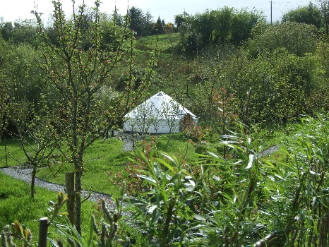 Pink Apple Orchard - irelandglamping.com