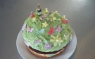 Pink Apple Orchard 2016 Home Baking. Special cake for guests 001