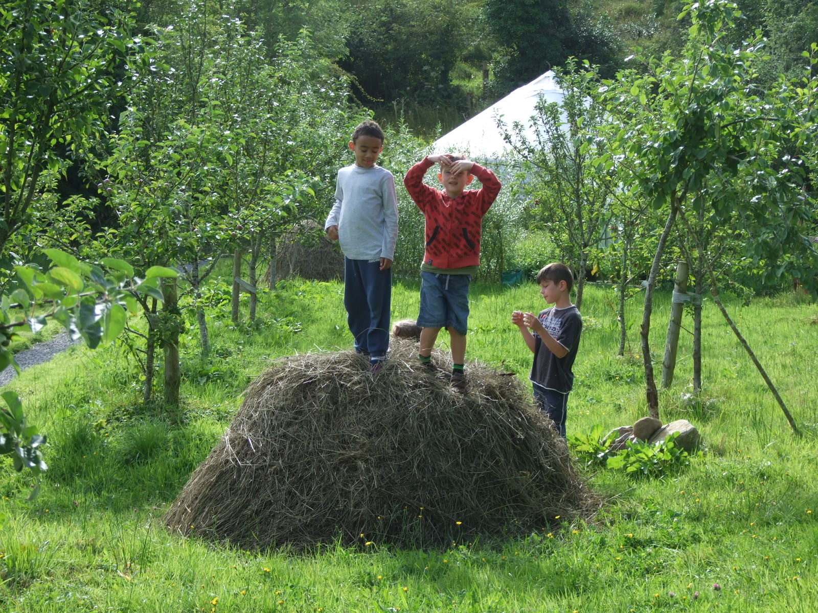 Play time in The Orchard at Luxury Campsite