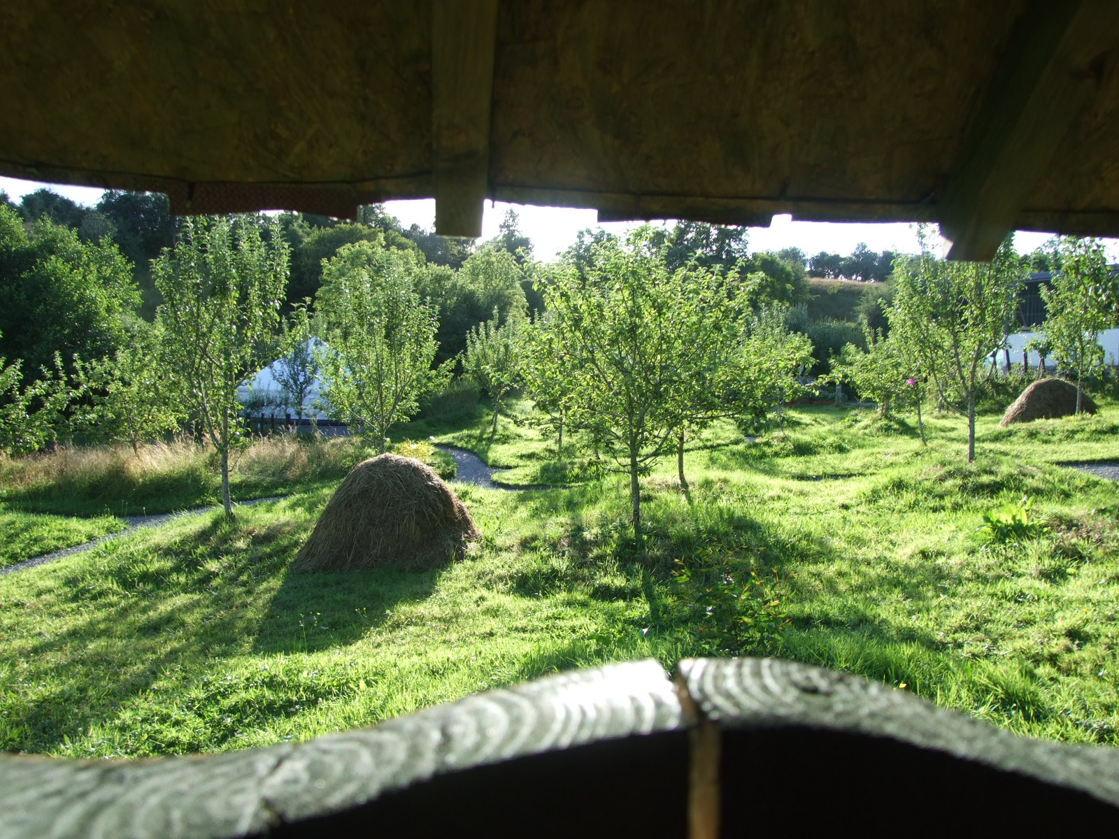 View Through The Window from Luxury Camping Eco Toilet Facilities.