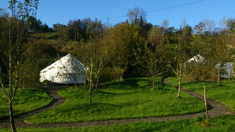 Glamping In Ireland - Luxury Campsite within Cider Orchard, Leitrim, Ireland.