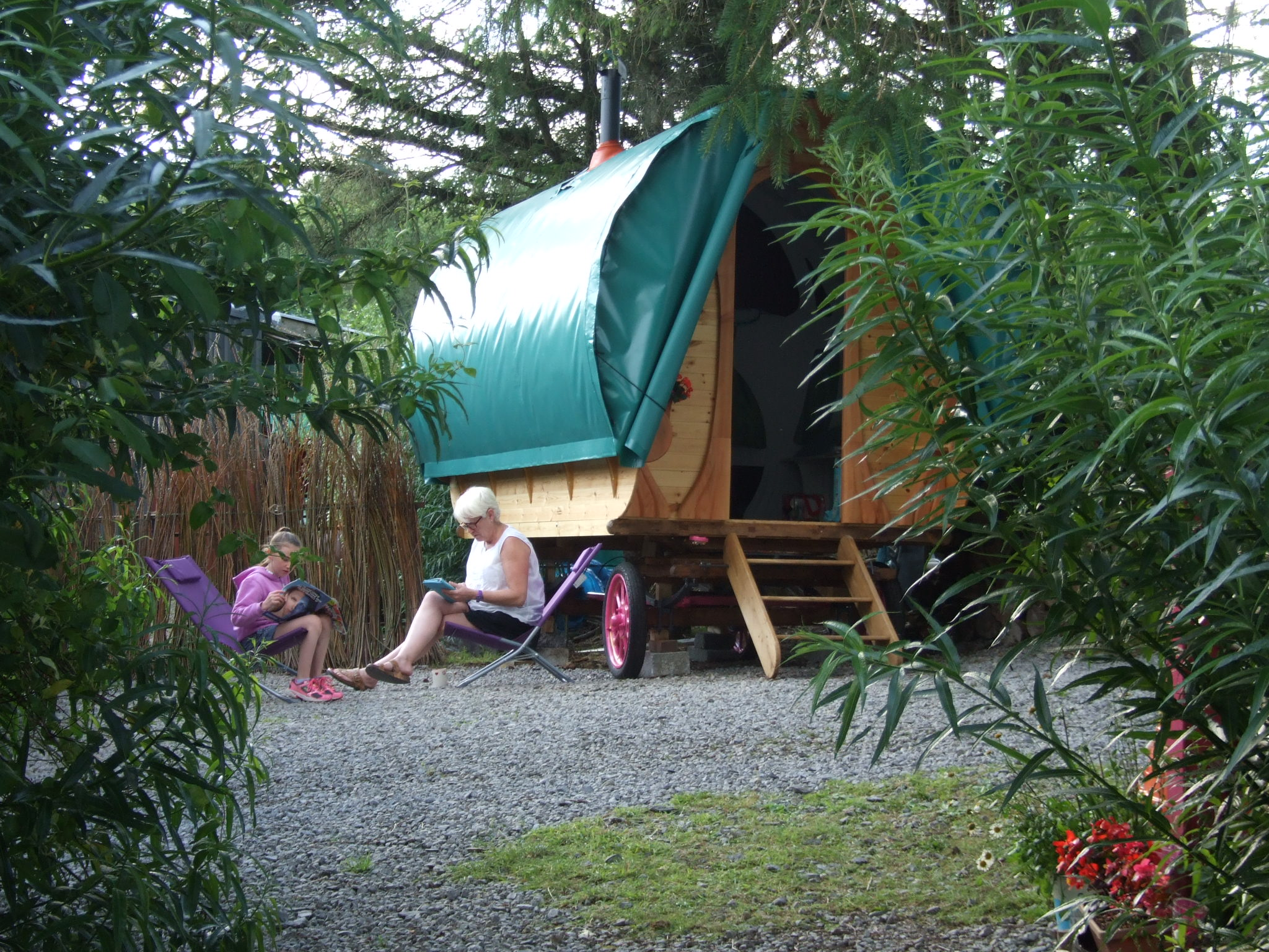 Summer Time at Glampsite. Gypsy Caravan. Butterfly nature, Corry, Leitrim 033
