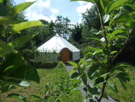 Drift Wood Celtic Yurt. Glamping In Ireland.