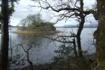 Slish Wood, Our walk begins! Looking out onto Lough Gill - Family Walks.