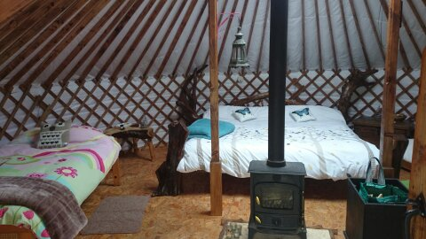 irelandglamping. Pink Apple Orchard Visitors. Family 639