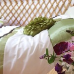 Glamping In Ireland - Yurt Holiday Breaks for families and Friends