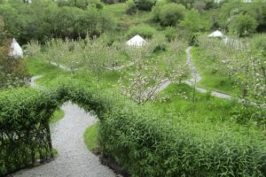 Pink Apple Orchard - May Apple Blossom, Glamping in Ireland 3