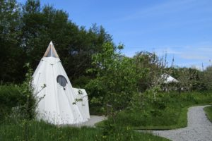 Pink Apple Orchard - The Teepee and a Yurt - Spring