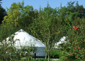 Luxury Glamping In Ireland, Leitrim. Camping within a Cider Orchard