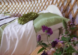 Luxury Glamping with Comforts of Home, Ireland, Leitrim