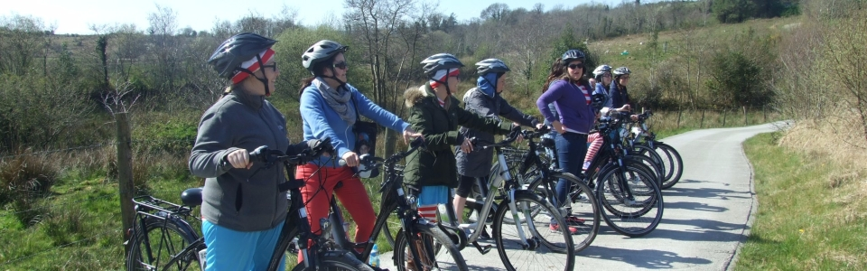 2015 Activities at Pink Apple Orchards Galmpsite – Electric Bike Hire (8)