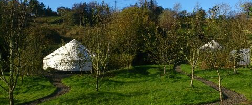 Pink Apple Orchard – Yurt Holidays (1) (72)